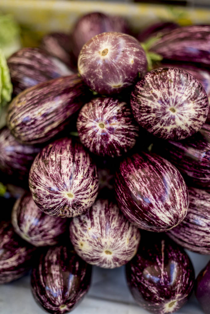 Eggplant are in season · www.italyfoodandwinetours.com