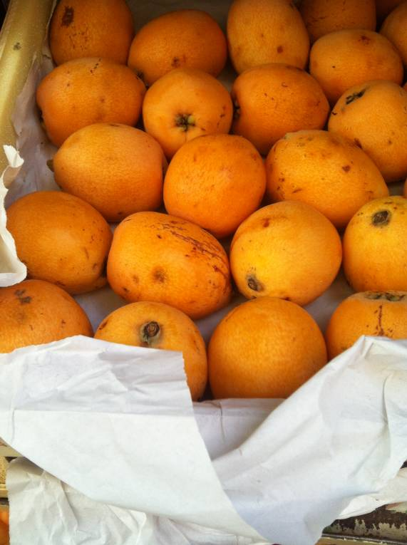 Loquat are in season · www.italyfoodandwinetours.com