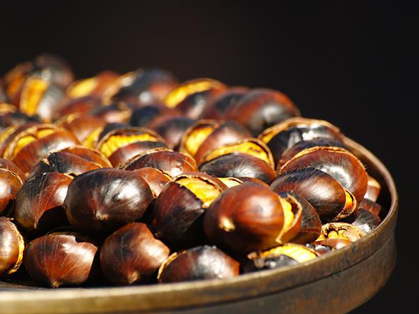October Food Festivals in Italy
