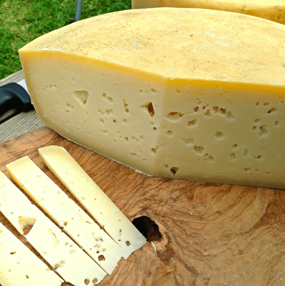 vezzena alpine cheese from Italy