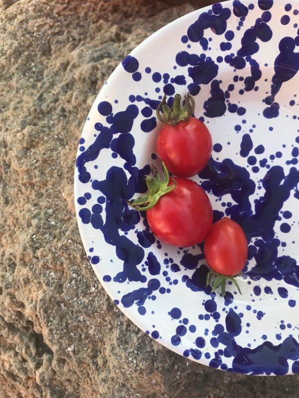 pomodorino di Manduria, Slow Food presidia