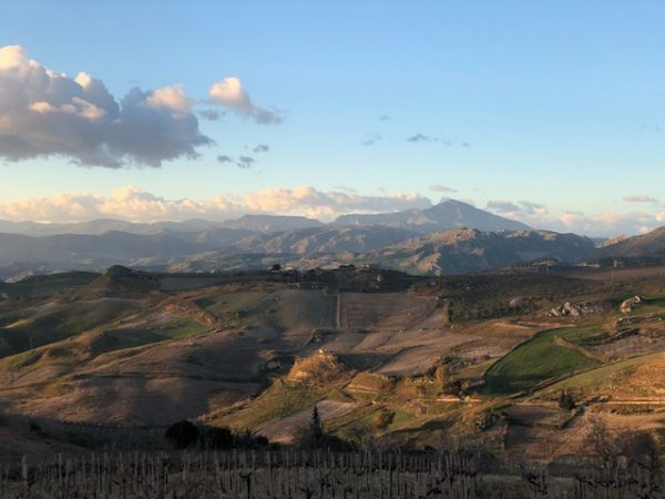 roadtripping Sicilian wineries