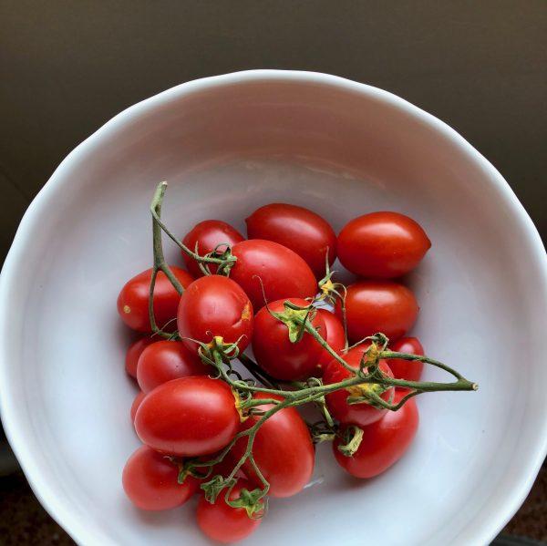 pixel tomatoes
