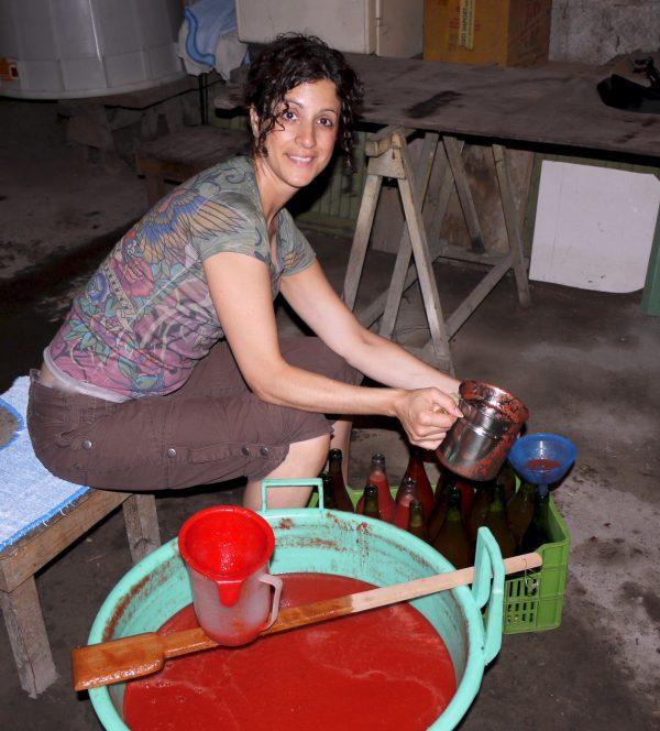 Gina canning plum tomatoes