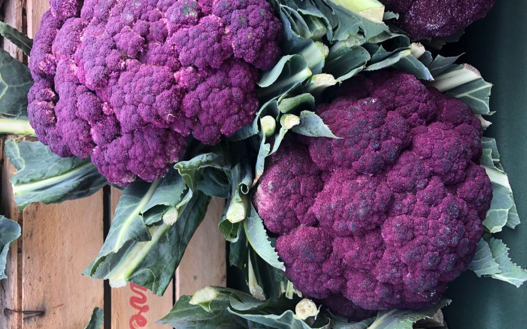 """Bastaddu affucatu"" Sicilian purple cauliflower recipe"