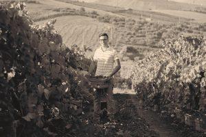 Giuseppe Vaccaro, nonno