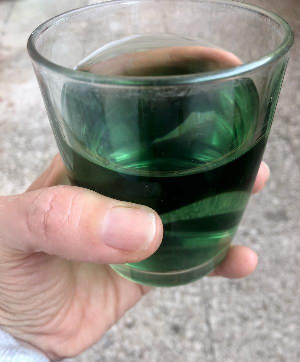 artichoke tea infusion
