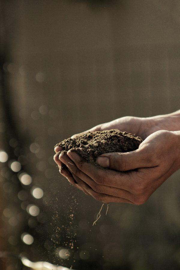 composting helps in reducing food waste