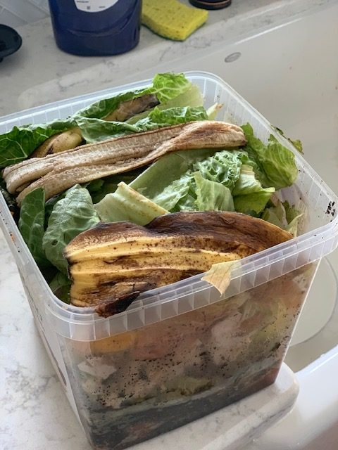 composting to reduce food waste