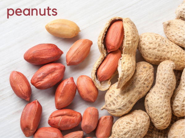 peanuts are not nuts! They're legumes