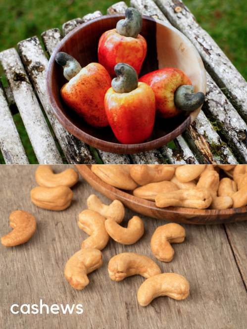 cashews are seeds that grow outside of the fruit
