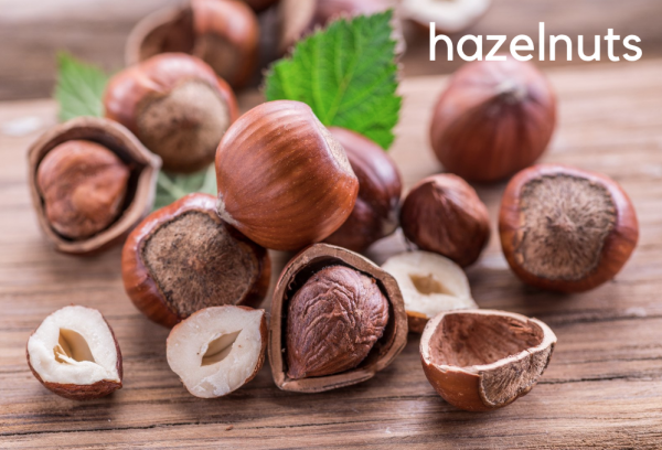 hazelnuts are botanical nuts