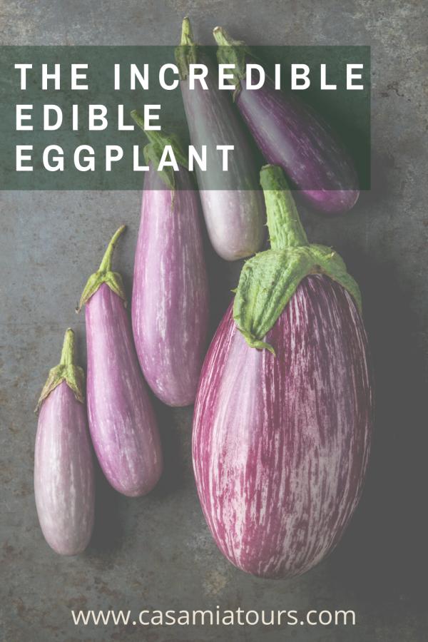 incredible edible eggplant